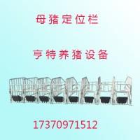 厂家直销母猪定位栏设备养猪设备放心省心