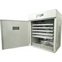 孵化机  新源880枚电脑全自动孵化机