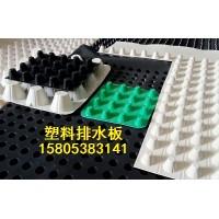 黑色绿色白色排水板/厂家定做生产